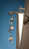 dekoracyjny kuranta wiatr obraz royalty free