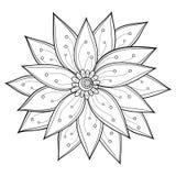 Dekoracyjny kwiat z liśćmi ilustracji