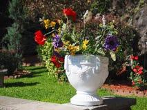 Dekoracyjny kwiatu garnek Zdjęcia Stock
