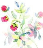 Dekoracyjny kwiecisty tło Zdjęcia Stock