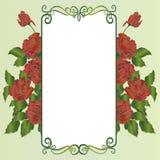 Dekoracyjny kwiecisty tło z różami Zdjęcie Stock