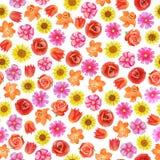 Dekoracyjny kwiecisty t?o Różni jaskrawi czerwieni i menchii kwiaty royalty ilustracja