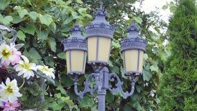 Dekoracyjny lampion przeciw tłu zieleni winogrona zdjęcie wideo