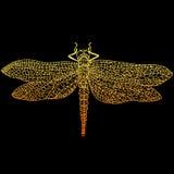 Dekoracyjny, piękny, pełen wdzięku dragonfly, stypunk styl, ośniedziały Obrazy Royalty Free