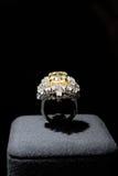dekoracyjny pierścionek Zdjęcie Stock