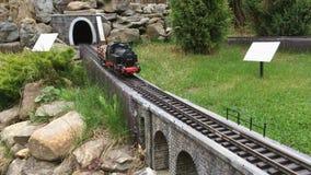 Dekoracyjny pociąg rusza się w lato parku na sztucznej kolei zdjęcie wideo