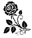 Dekoracyjny różany cierń royalty ilustracja