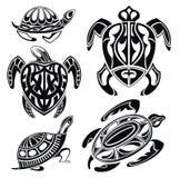 Set dekoracyjni żółwie Fotografia Royalty Free