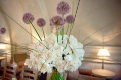Dekoracyjny set kwiaty w pustej kawiarni obraz stock