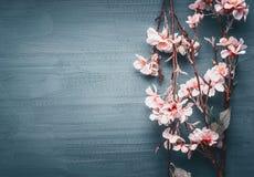 Dekoracyjny sztuczny wiosny okwitnięcie na zmroku - błękitny tło obraz stock