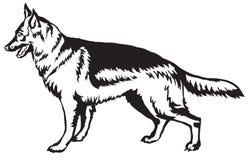 Dekoracyjny trwanie portret psi niemieckiej bacy wektoru illus ilustracji