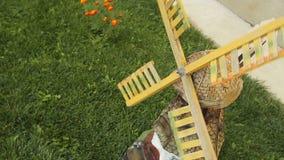 dekoracyjny wiatraczek Mały dekoracyjny wiatraczek jest elementem projekt zdjęcie wideo