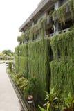 Dekoracyjny wiszący ogród na więcej niż jeden opowieści budować Obrazy Stock