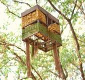Dekoration der bunten Laterne im Vogelrahmen Lizenzfreies Stockfoto