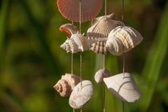 Dekoration gemacht von den Seeoberteilen auf dem Thread lizenzfreie stockbilder