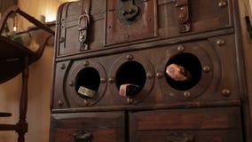 Dekorativ öffnen Sie den Kasten für die Speicherung von Weinflaschen im Speicher ` s Hintergrund stock video