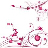 Dekorativ bakgrund för rosa färgblommavektor Royaltyfri Bild