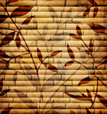 Dekorativ bambu Royaltyfria Foton