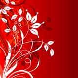 Dekorativ blom- bakgrund,   Royaltyfria Foton