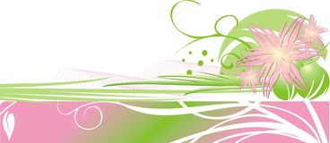 dekorativ blom- ram för kortchrysanthemums Arkivfoton