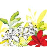 dekorativ blommasommar Arkivfoton