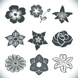 Dekorativ blommauppsättning för tappning Royaltyfri Fotografi