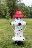 Dekorativ brandpost Fotografering för Bildbyråer