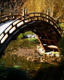 dekorativ bro Fotografering för Bildbyråer