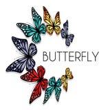 Dekorativ fjärilscirkel Arkivfoto
