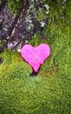 Dekorativ hjärta på grön mossa parkerar in Arkivbild