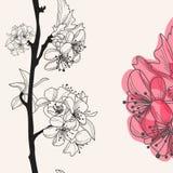 Dekorativ körsbärsröd blomning stock illustrationer