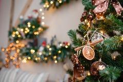 Dekorativ kanel och torkat - fruktnärbild Dekorerad julgran på suddig mousserande felik bakgrund Royaltyfri Bild