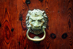 Dekorativ knopp för dörr för bronslejonhuvud fotografering för bildbyråer