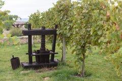 Dekorativ Masher i vingård Royaltyfri Bild