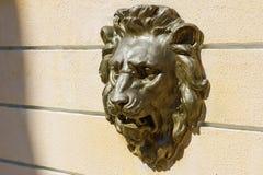 Dekorativ murbrukbasrelief på väggen på huvudet av ett lejon Arkivbilder
