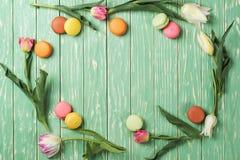Dekorativ ram från pastellfärgade tulpan för en signal och franska makron Royaltyfria Bilder