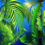 Dekorativ sömlös modell för palmblad Vektorblåttabstrakt begrepp b royaltyfri illustrationer