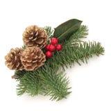 dekorativ spray för jul arkivbilder