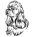 Dekorativ stående av illustrationen för hundamerikanCocker Spaniel vektor stock illustrationer