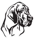 Dekorativ stående av illustrationen för hundGreat dane vektor Vektor Illustrationer