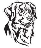 Dekorativ stående av illustrationen för hundTollervektor Vektor Illustrationer