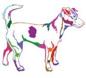 Dekorativ stående stående av vektorn för hundJack Russell terrier Royaltyfria Foton