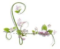 dekorativ swirl Royaltyfri Fotografi