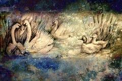 Dekorativ teckning av svanar och lösa änder som simmar på dammet med vasser Fotografering för Bildbyråer
