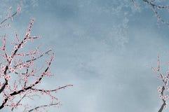 dekorativ texturerad tree för backgroCherry stock illustrationer