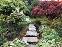 Dekorativ trädgård arkivbilder