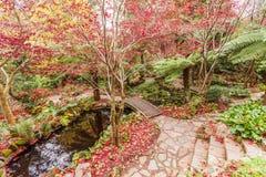 Dekorativ trädgård med damm, spångar och träd med röd mor Arkivfoton