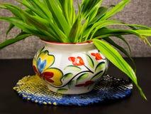 dekorativ växtkruka royaltyfria bilder