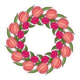 Dekorativ vårram med kransen av tulpan Royaltyfri Bild