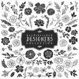Dekorativ växt- och blommasamling för tappning tecknad hand Arkivfoton